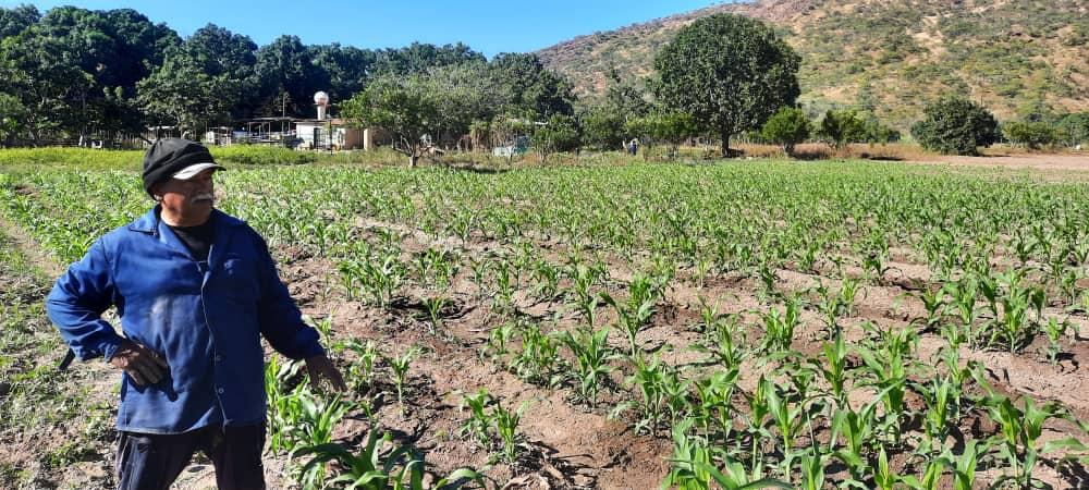 Estrenan plataforma digital para la atención de productores agrourbanos