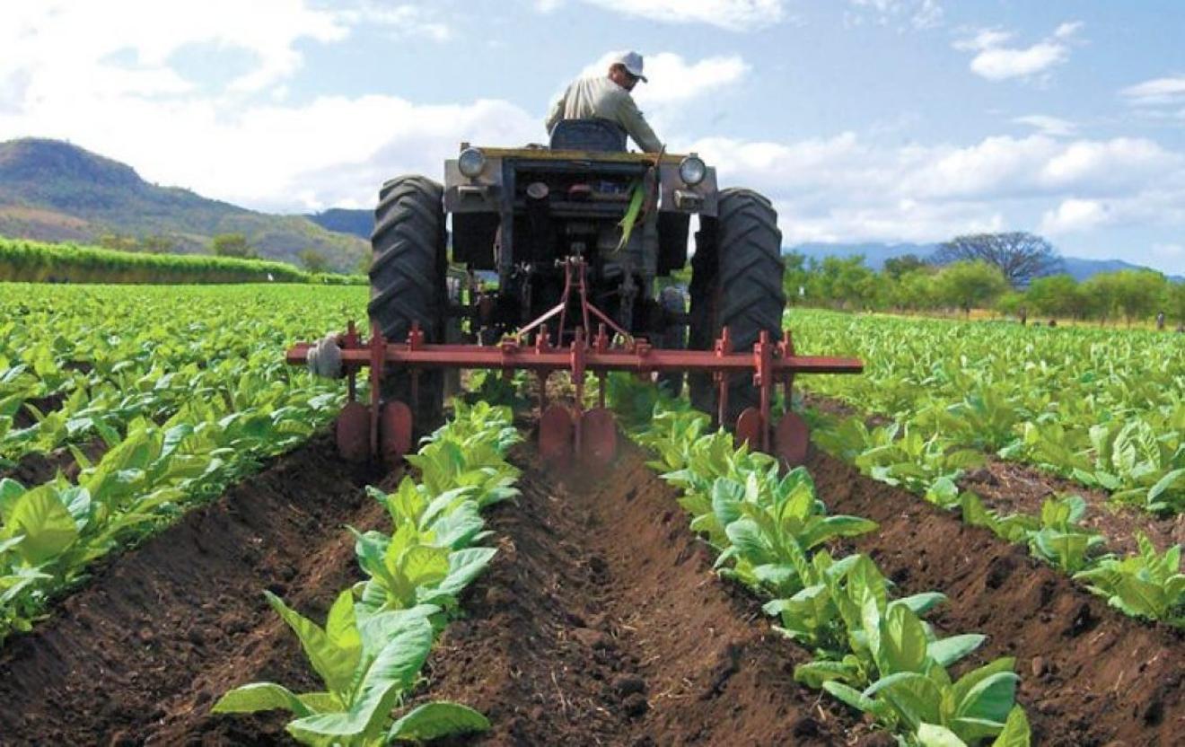 AN avanza en revisión de leyes remitidas por el Ejecutivo para la soberanía alimentaria