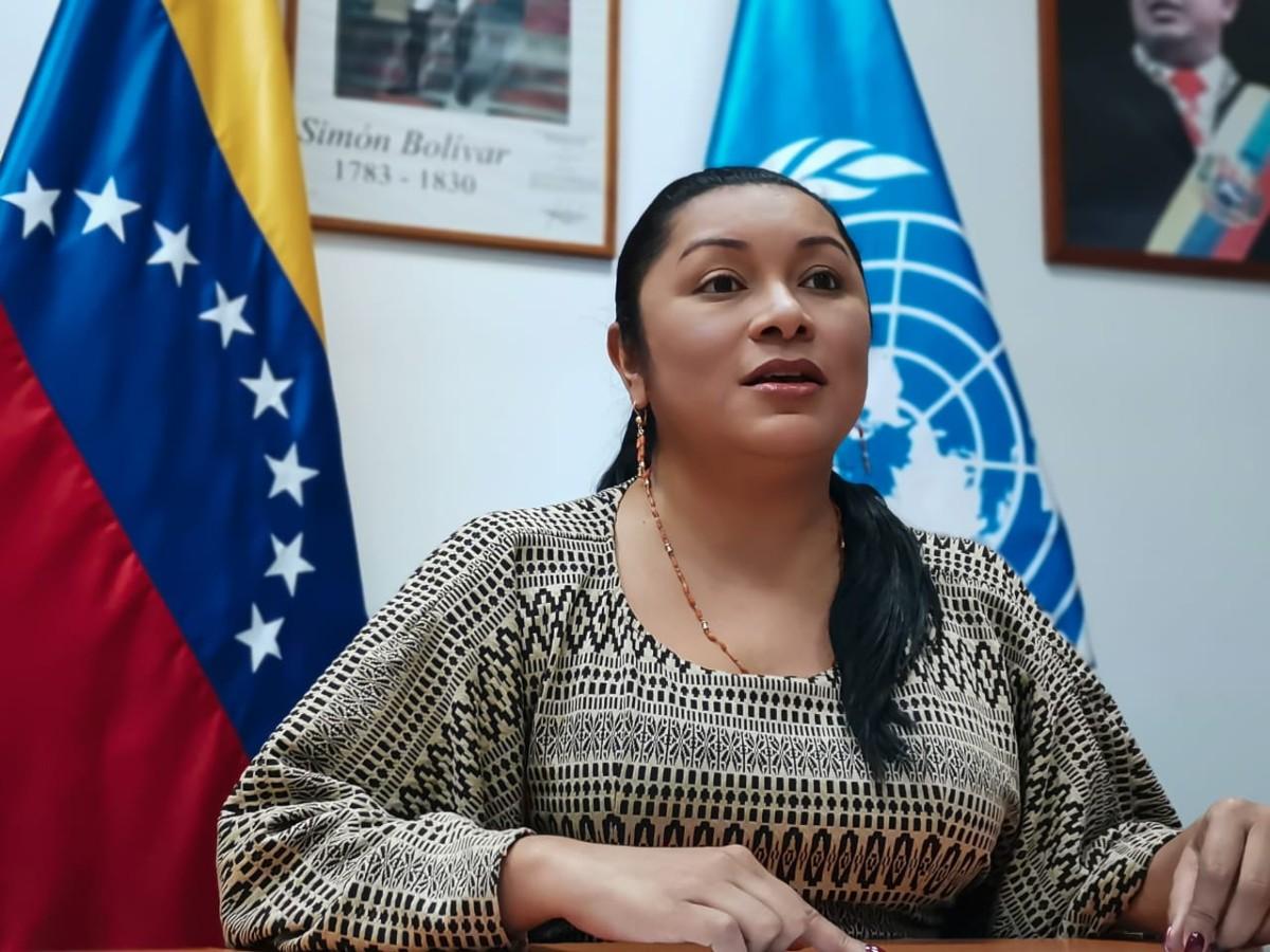 Pueblos Indígenas destacan la consolidación de logros del sector en Venezuela ante la ONU
