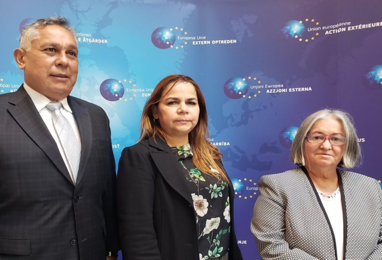 Eurodiputados enviarán misión a Venezuela, informó primera vicepresidenta de la AN